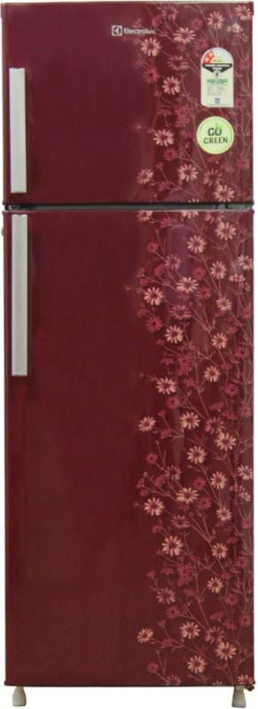 Electrolux 235 L Frost Free Double Door Refrigerator(Maroon Daisy, REF...