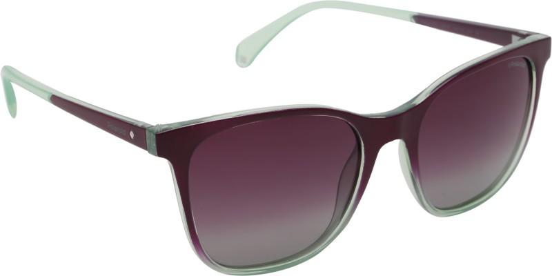 Polaroid Wayfarer Sunglasses(Violet)