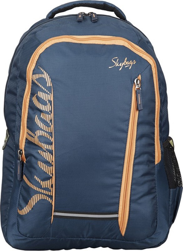 Skybags Footloose Router 4 Laptop Backpack Dbl 25 L Backpack(Blue)