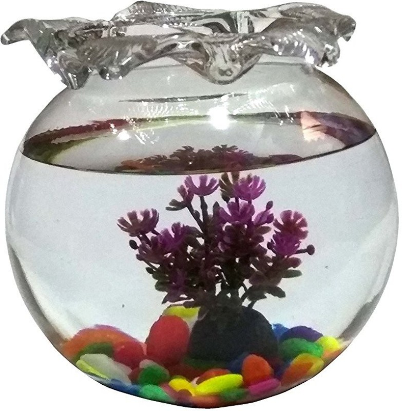 Jainsons Pet Products 3.2 L Fish Bowl