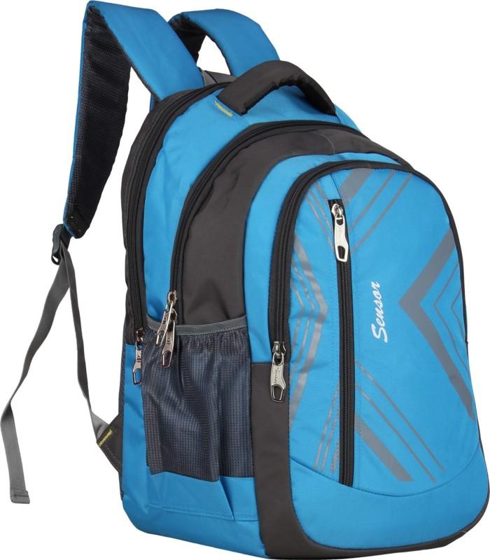 Sensor Frost 30 L Laptop Backpack(Blue)