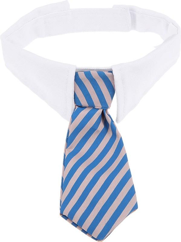 Futaba Cat Show Collar(Medium, Blue)