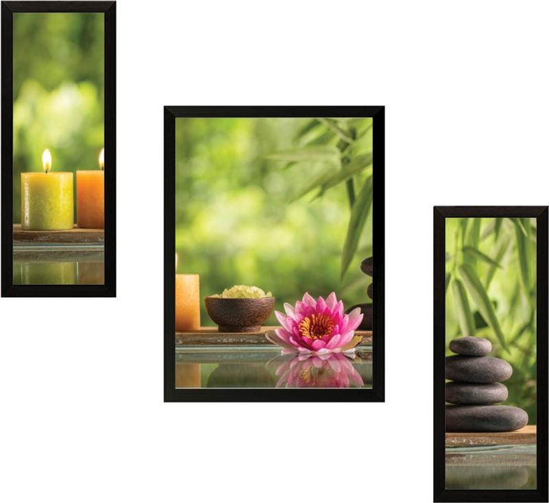 SAF Lotus Nature Set of 3 Digital Reprint Painting(13.5 inch x 22...