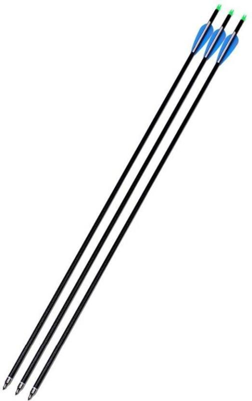 Victory Carbon Arrow(32)
