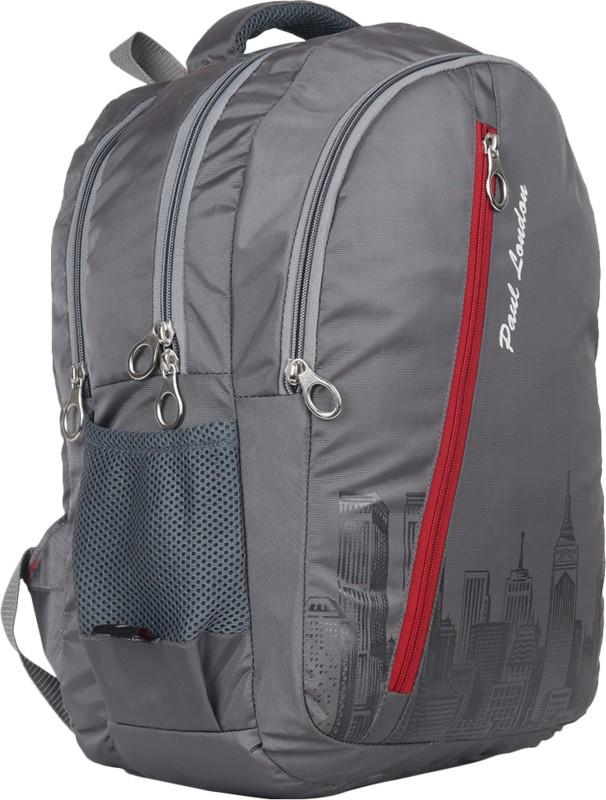 Paul London Pixel 35 L Backpack(Grey)