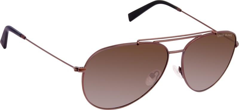 David Blake Aviator Sunglasses(Brown)