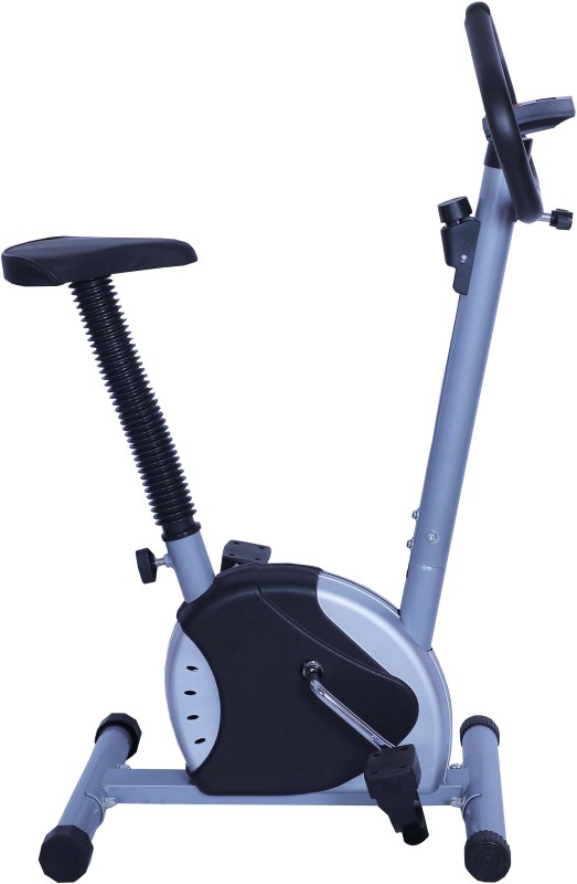 Online World DZ_Cycle_0_3 Indoor Cycles Exercise Bike(Silver)