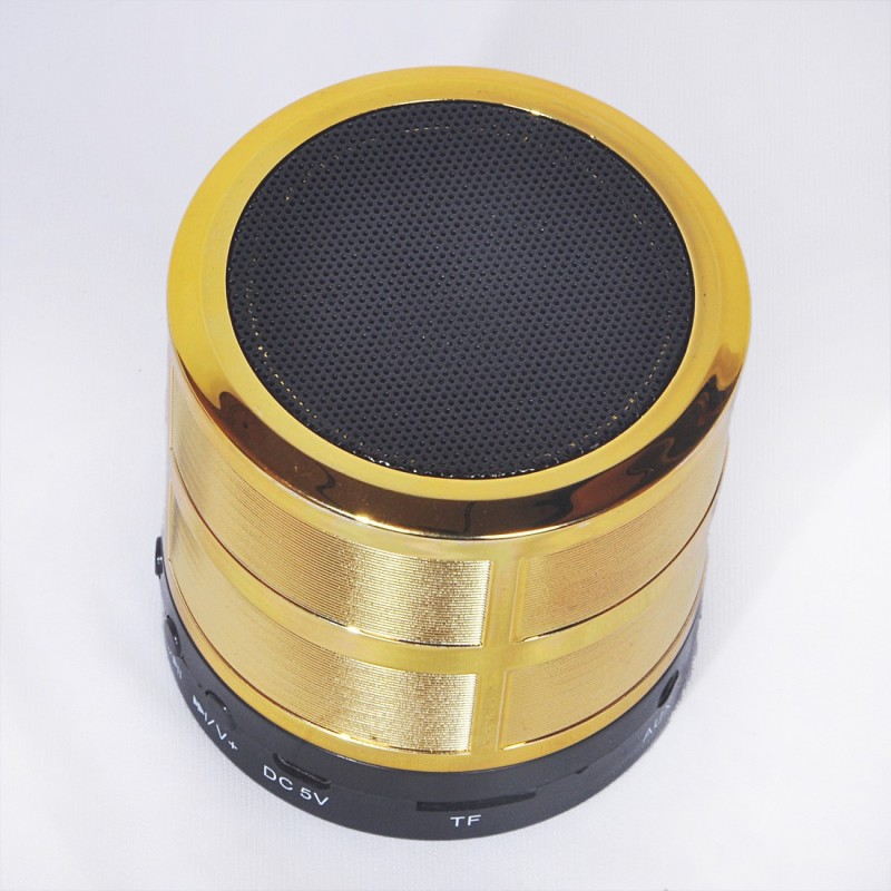RNY MINI SPEAKER (GOLD) Speaker Mod(Compatible only with  ALL)