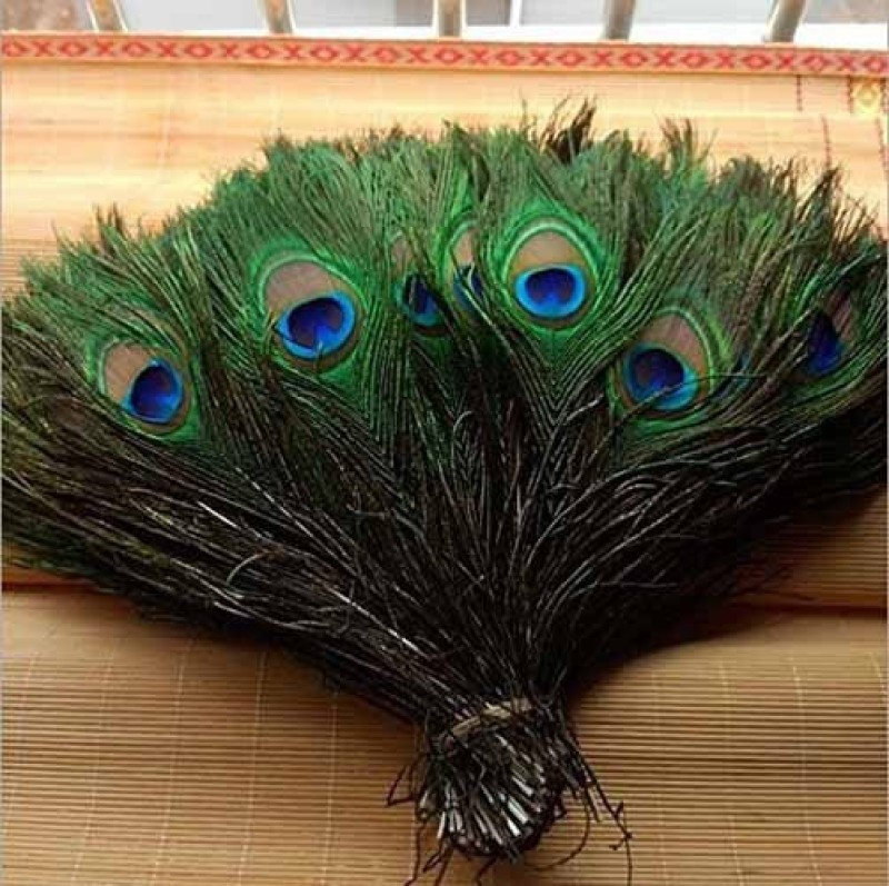 AB WORLD CLASS Pack of 75 Decorative Feathers(STANDARD Peacock Feather)