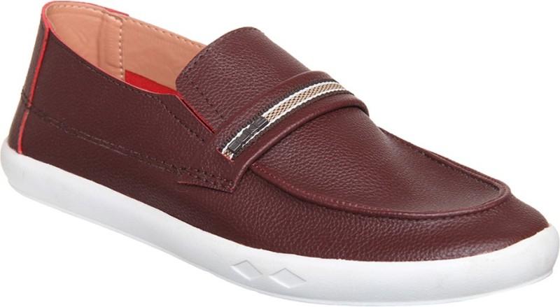 Duke Slip On Sneakers For Men(Brown)