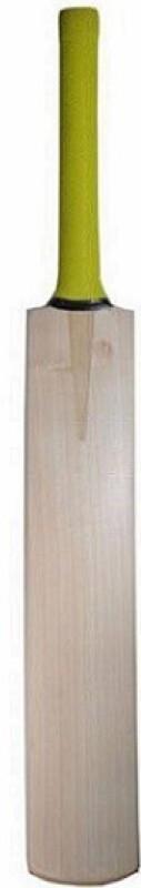 Aavik Master Blaster Plain English Willow Cricket Bat(Short Handle, .1150 kg)