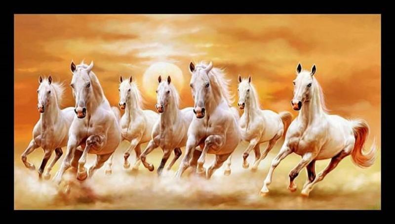 7 Horse Vastu Direction In Hindi Best Horse Image 2018