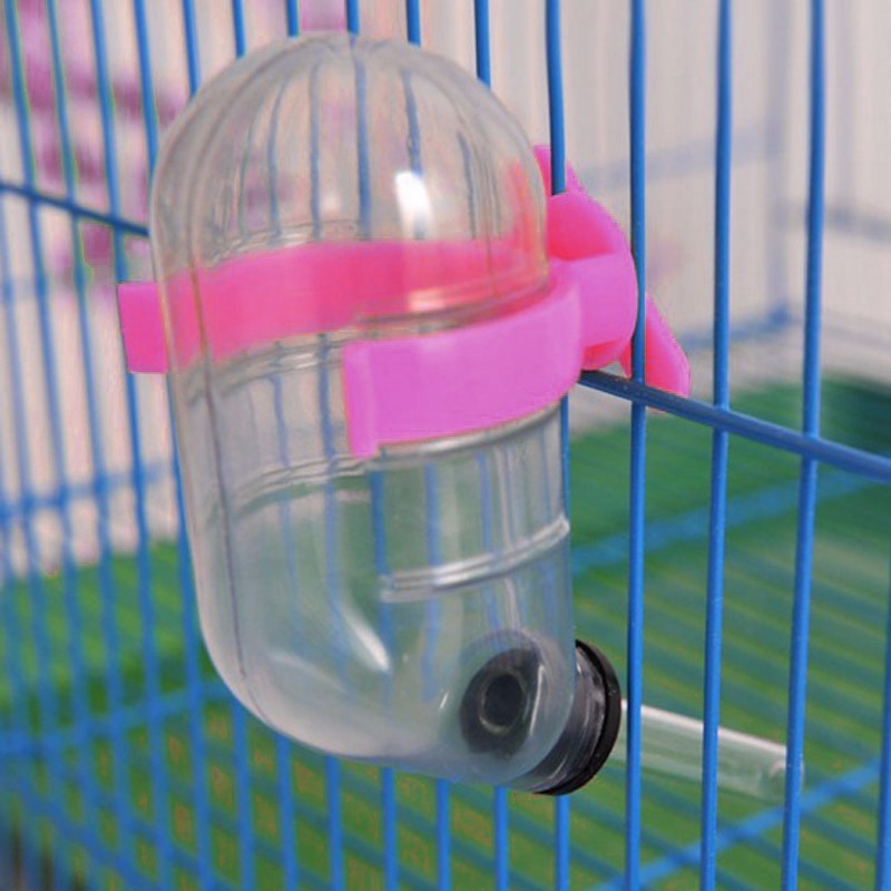 Sage Square Leak Proof Water Feeder for Hamster / Dwarf / Gerbil / Mice / Guinea Pig / Ferret / Rabbit Round Plastic Pet Bottle(60 ml Pink)