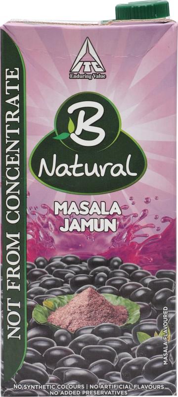 B Natural Masala Jamun 1 L