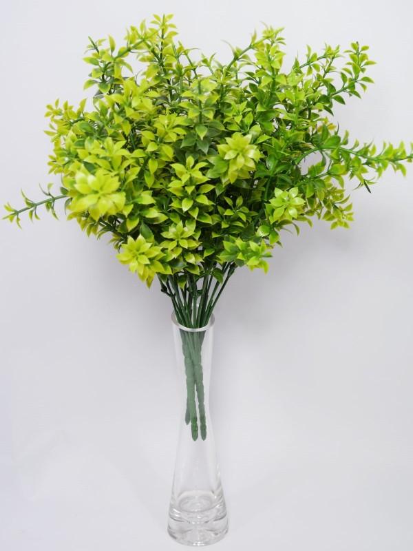 Fourwalls New Bud Vase Glass Vase(8 inch, Clear)