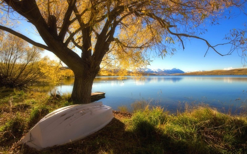 Natural Scene of Lake view Poster Paper Print(12 inch X 18 inch, Rolled)