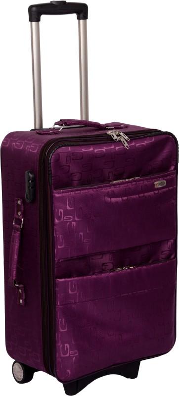 Trekker SINGLE SHELL Waterproof Trolley(Purple, 24 inch)