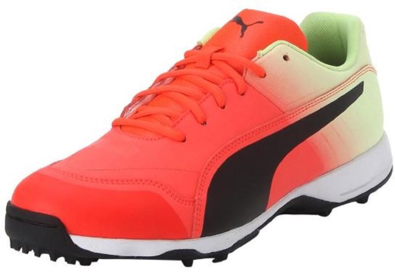 Puma Evo Speed one8 R Fade Cricket Shoes For Men(Orange, Green)