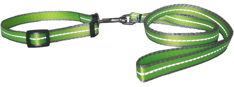 W9 High Quality Designer Nylon Leash and Adjustable Collar Set for Puppy- for Tracking, Patrolling, Walking, and Training -Length- 46 inches, Width-0.6 inch 116 cm Dog & Cat Strap Leash(Green)