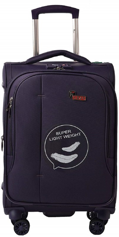 F Gear Aspire Expandable Cabin Luggage - 20 inch(Purple)
