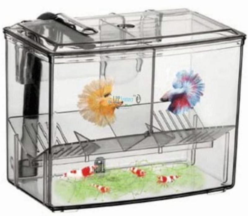 Aquapetzworld HUEY HUNG External Hang-on Breeding House 1.25L Rectangle Aquarium Tank(1.25)