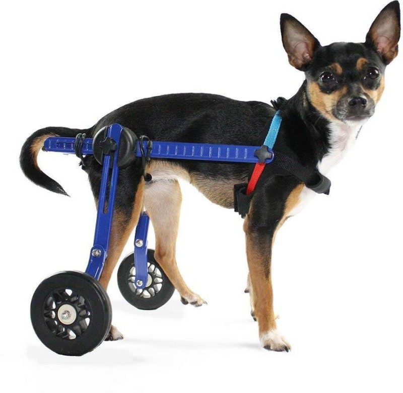 GTS GTSW106 Pet Wheelchair