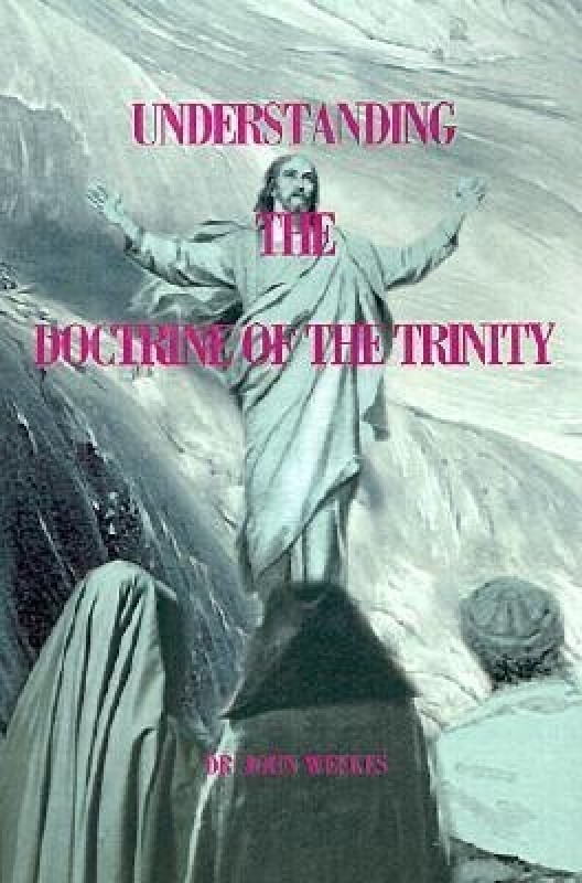 Understanding the Doctrine of the Trinity(English, Paperback, Weekes John)