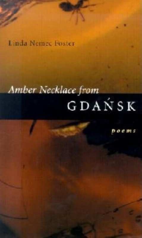 Amber Necklace from Gdansk(English, Paperback, unknown)