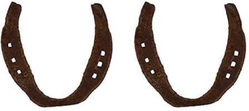 Aryshaa DG50125 Horseshoe(medium)