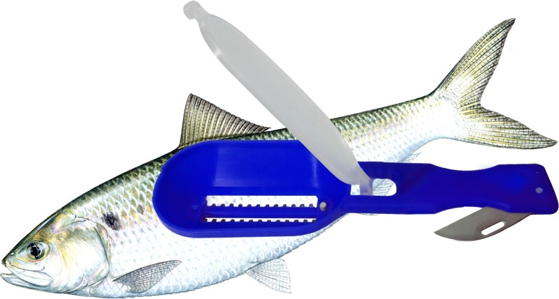 sun surya Cleaning Fish Skin Scraper with lid Fish Scaler Fish Scaler(Pack of 1)