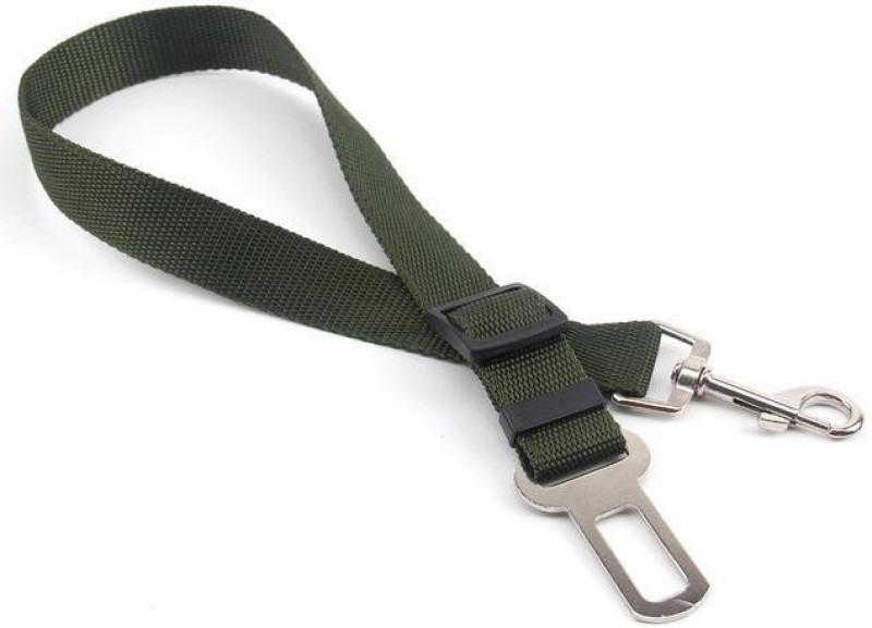 Aqua green pet seat belt Pet Seat Belt(Small)
