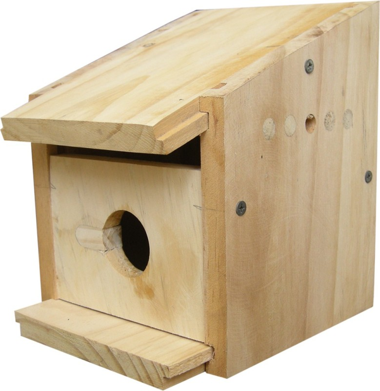 Birdhousebuilder Cottage for House Sparrows Bird House 3 Bird House(Wall Mounting, Tree Mounting, Free Standing)
