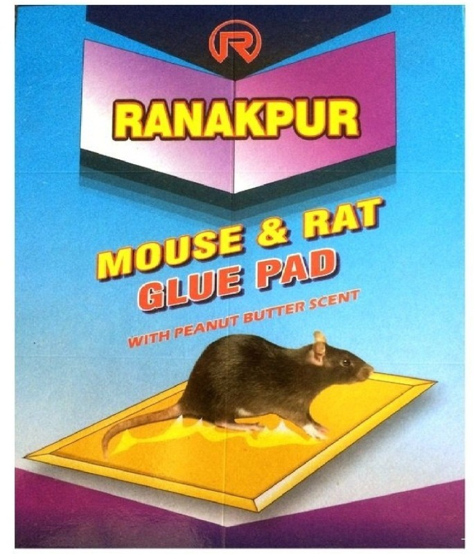 Ranakpur Mouse & Rat Trap with Peanut Butter Scent (Rat Catcher without Position) (34x12 Cm), Pack of 10 Live Trap