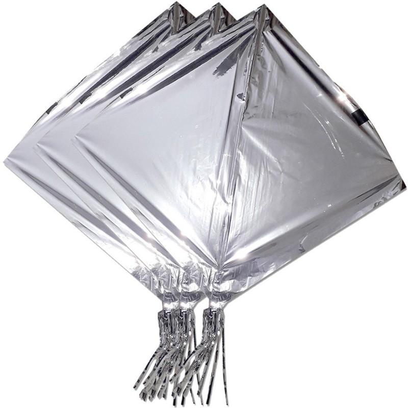 ProjectsforSchool Kites