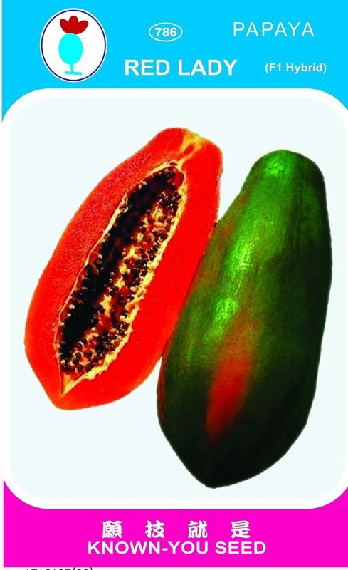 Pearl red lady 786 taiwan papaya seeds Seed(550 per packet)
