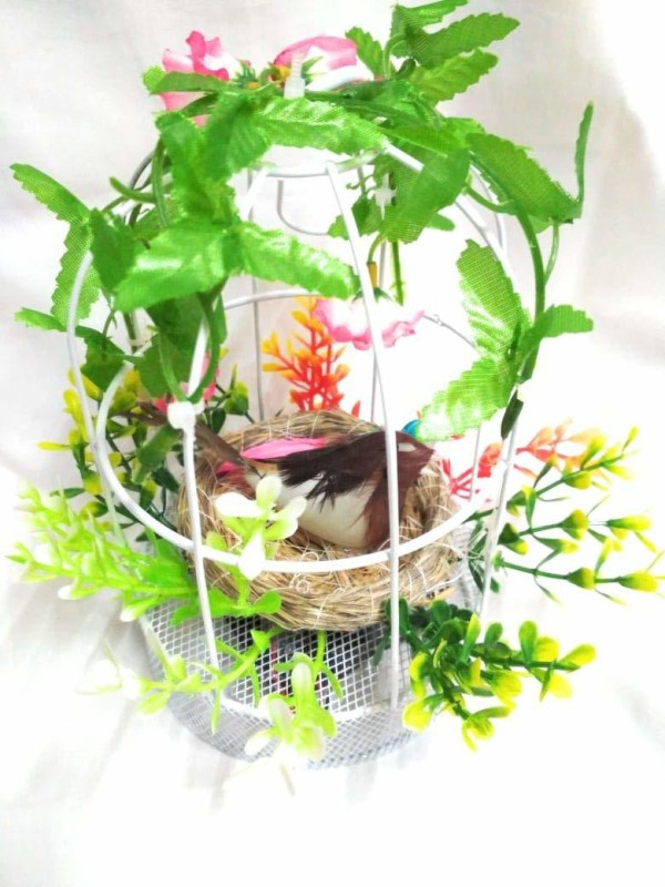 Breewell Imported Charming Speaking Bird Cage When it's Move (Size 4
