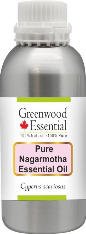 Greenwood Essential Pure Nagarmotha Essential Oil (Cyperus scariosus) 100% Natural Therapeutic Grade Steam Distilled(300 ml)