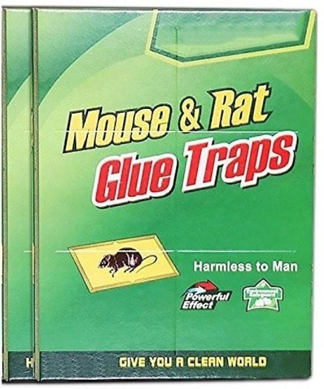 Plhbs 2226 Live Trap