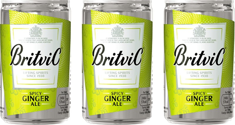Britvic Spicy Ginger Ale 150 ml (Pack of 3) Can(3 x 150 ml)