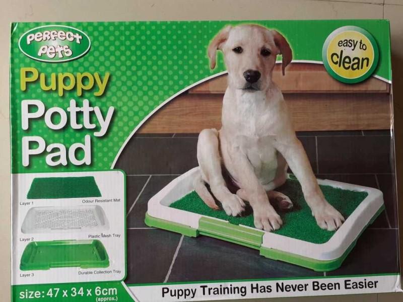 Medigo potty patch small Dog Pet Mat