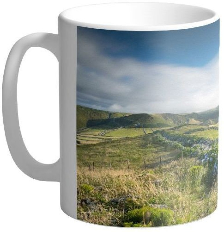 Arkist flores island covered with thousands of hydrangeas flowers wallpaper Ceramic Mug(340 ml)