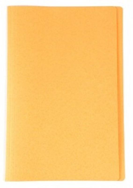 ARUN Polypropylene File Folder(Set Of 1, Yellow)