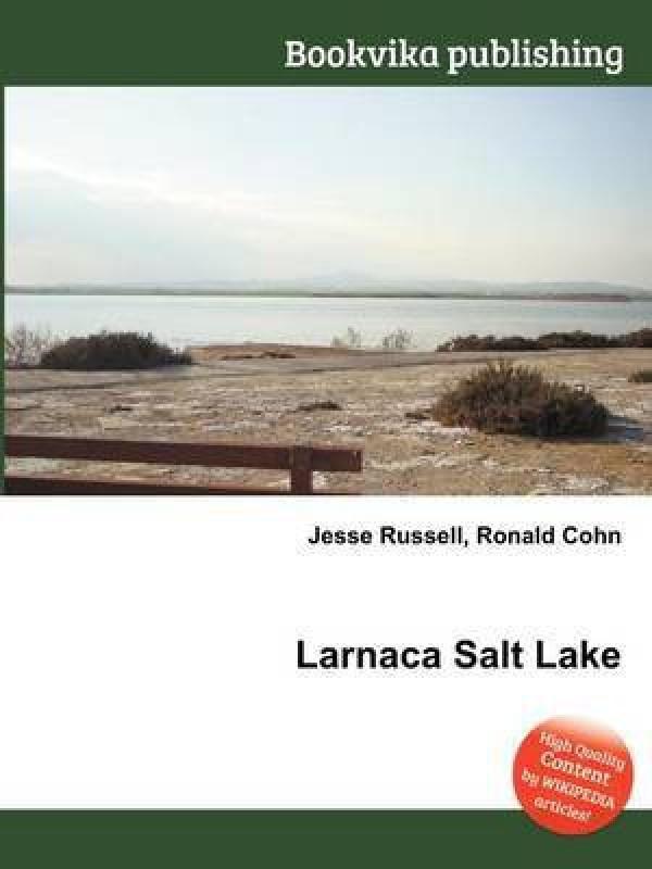 Larnaca Salt Lake(English, Paperback, unknown)