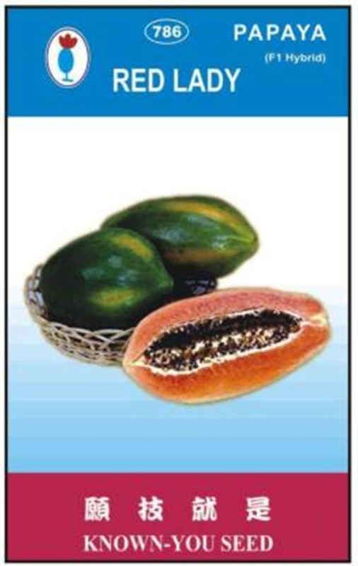 PREMIER PLANTS Red Lady Taiwan Seeds 786 Papaya Seed(290 Seeds) Seed(290 per packet)
