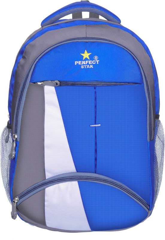 perfect star 14 inch Laptop Backpack(Blue)
