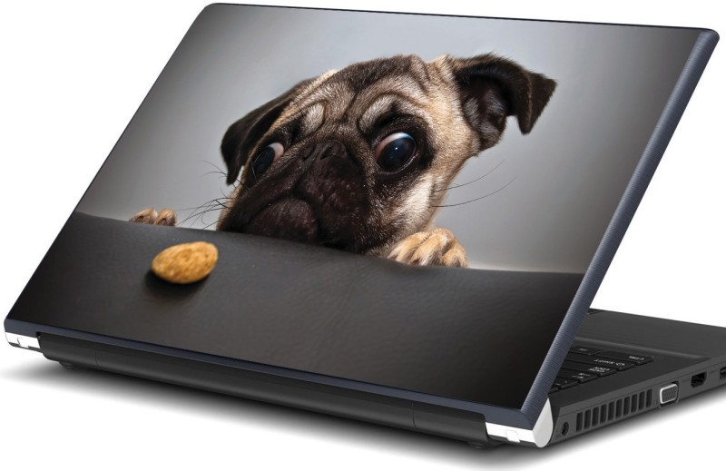 Artifa Cute Pug with A Cookie Als0871 Vinyl Laptop Decal 15.6