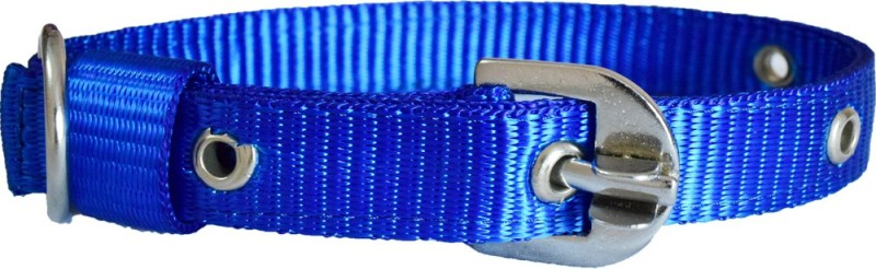Paw Zone Dog Anti-stress Collar(Large, Blue)