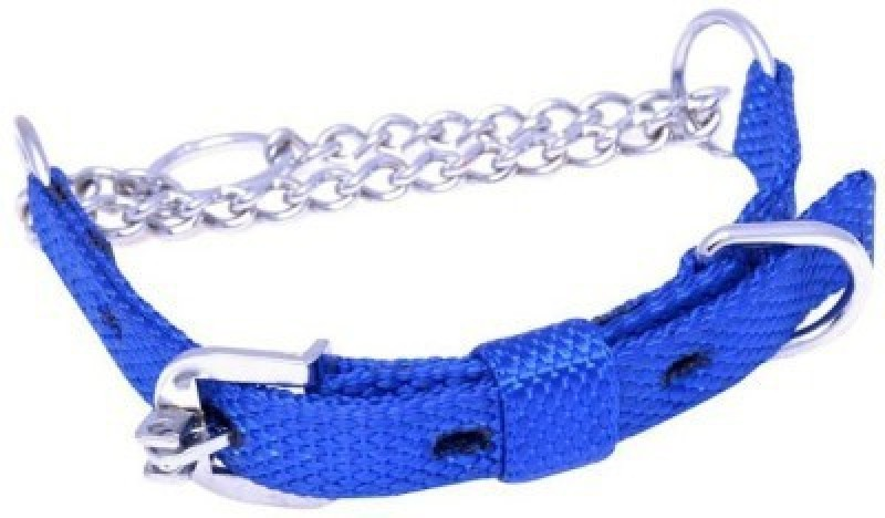 Petshop7 Blue Chock Collar 0.75 Inch Small Dog Choke Chain Collar(Small, Blue)