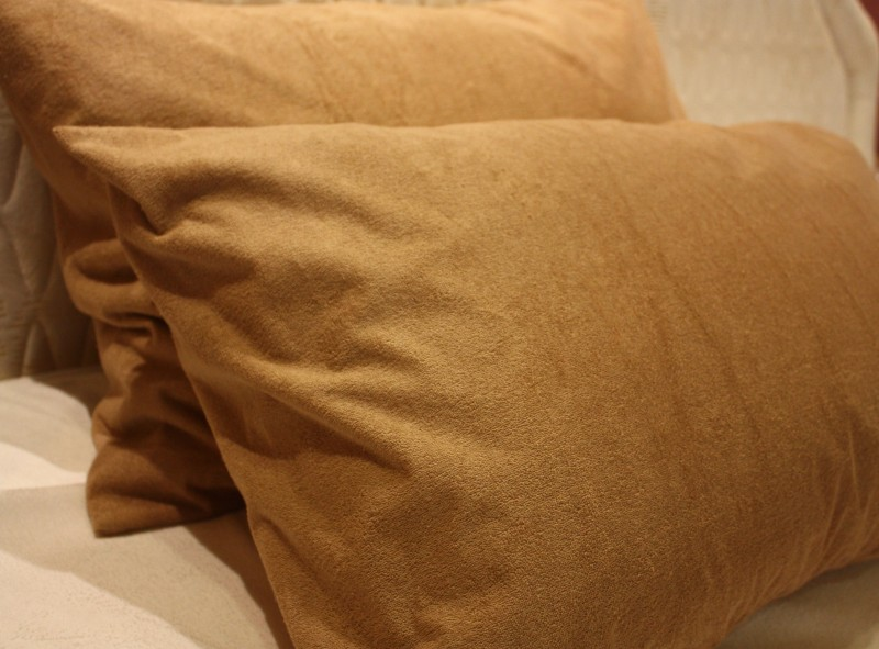 TRANCE HOME LINEN Plain Plain Filled Queen Size Pillow Protector(2)
