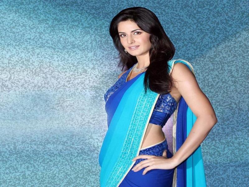Katrina Kaif in Blue Saree Poster Paper Print(12 inch X 18 inch,...